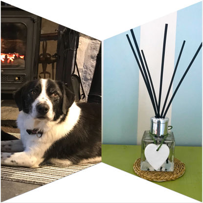 Brodie's Hearth Reed Diffuser