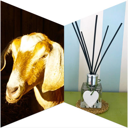 Katie's Meadow Reed Diffuser